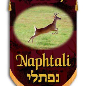 Tribe of Naphtali/Simeon