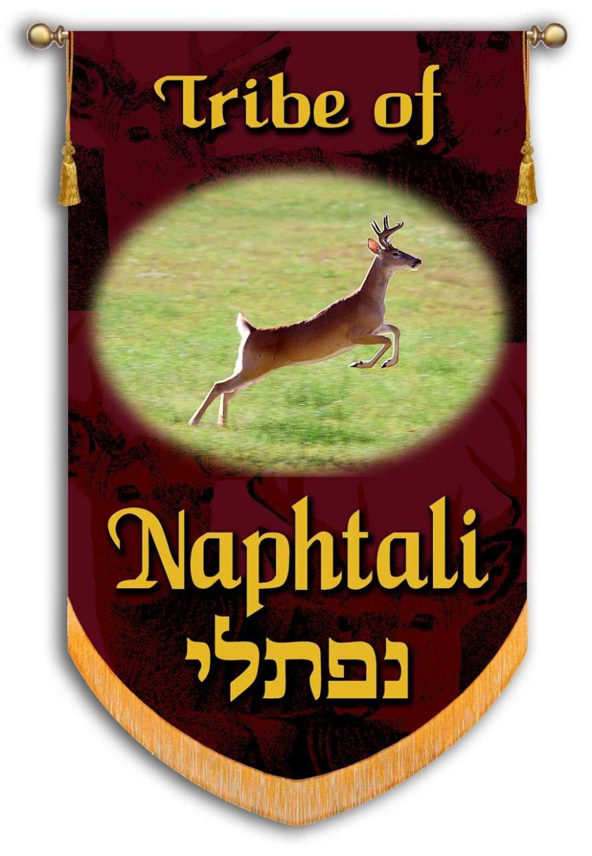 Tribe of Naphtali/Simeon